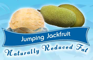 Jumping Jackfruit Ice Cream